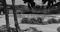 The Big Knife (1955) [BluRay] (1080p)