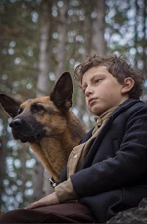 SHEPHERD The Story Of A Jewish Dog (2019) [1080p] [WEBRip] [5.1] [YTS]